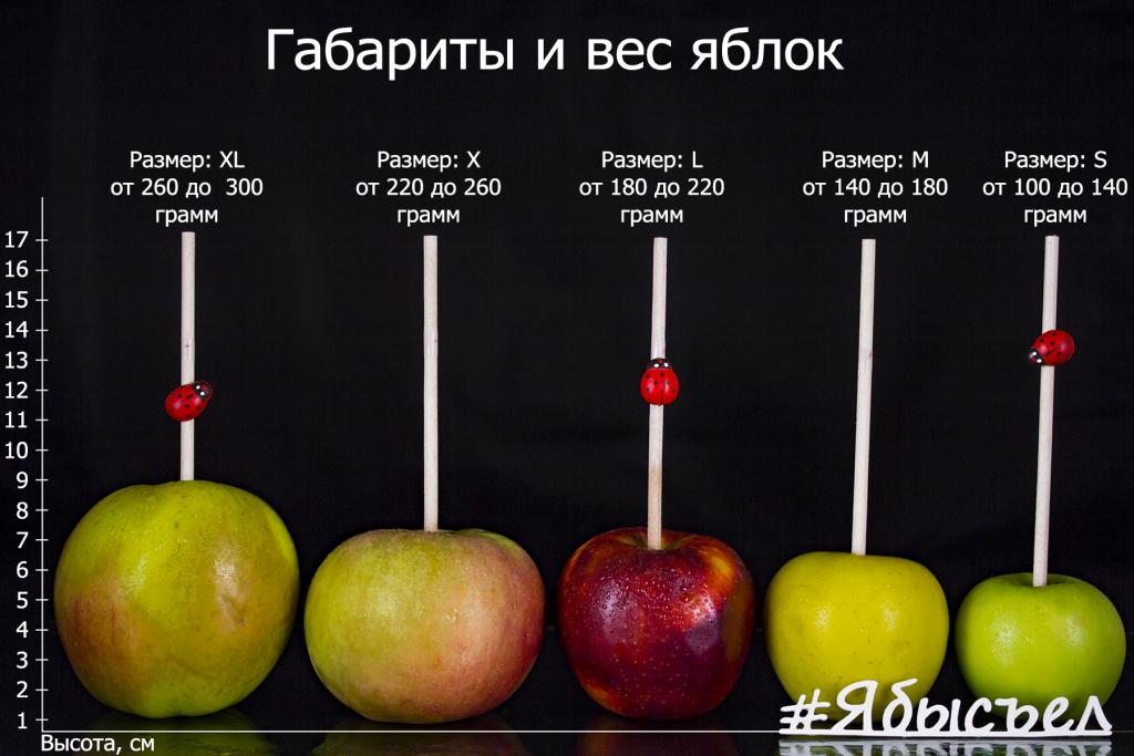 Калиброванные свежие яблоки